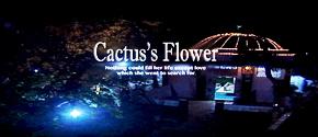 CACTUS'S FLOWER